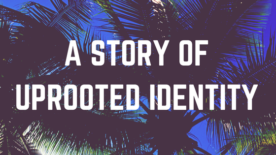 a story of uprooted identity and palm trees